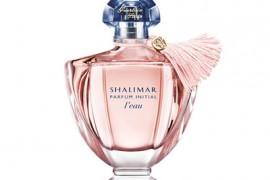 Shalimar Initial L`eau