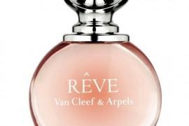 Reve Van cleef
