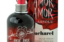 Amor Amor Absolu
