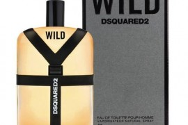 Wild DSQUARED² for men