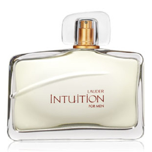 Intuition for Men 3