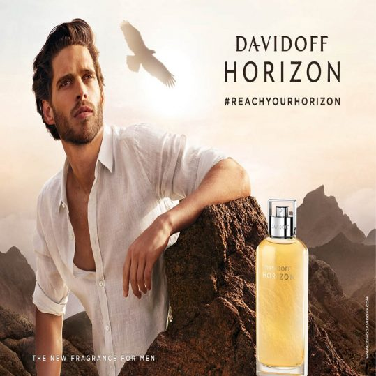 Horizon Davidoff for men - عطربازان (2)