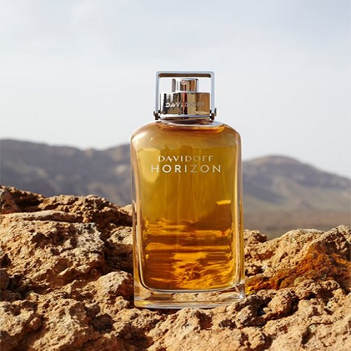 Horizon Davidoff for men - عطربازان (4)