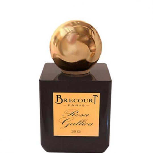 rosa-gallica-brecourt-for-women-and-men